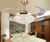 TiptonLight Gold Retractable Ceiling Fan-110cm with Remote Control-Modern Style for Living Room,Bedroom,Study