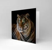 GREETINGS CARD BIRTHDAY GIFT ANIMAL BIG CAT TIGER EYES CS1844