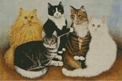 5 Cats cross stitch kits, 14ct, Egyptian cotton thread 300x199stitch,65x47cm cross stitch kit