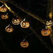 ER CHEN(TM) Solar Powered 10 LED Pumpkin,Indoor & Outdoor Waterproof 4m Pumpkin Halloween String lights Solar String Lights for Patio Gardens Homes Christmas Party,Warm White
