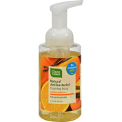 CleanWell All-Natural Antibacterial Foaming Hand Wash Orange Vanilla - 280ml