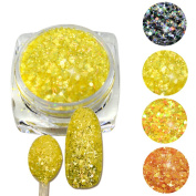 Trendy Nail 3g jar 3D Sequins Nail Cheese Glitter Dust Powder Polish Gel Girl Colour Dazzling Decorations SN21-24