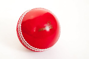Pack of 6 Cricket Dynamics InvinciBALL®