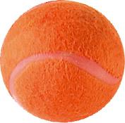 Grey Nicolls Cricket Sports Coaching Practise Mini Tennis Ball