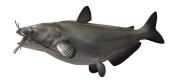 Channel Catfish Wall Mount Fish Replica, Fishing Wall & Coastal Decor