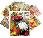 Postcard Pack 24pcs Veges and Fruits Vintage Seed Pockets Gardens