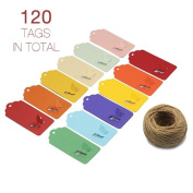 ZapFirst 120 PCs Butterfly Shaped Rectangular Gift Tags with Free 37m Hemp Rope