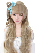 ROLECOS Kotori Minami Cosplay Wigs Anime Costume Party Wig Flaxen