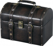Azumaya IW-875 Storage Carry Trunk Synthetic Leather Finish Compact Black