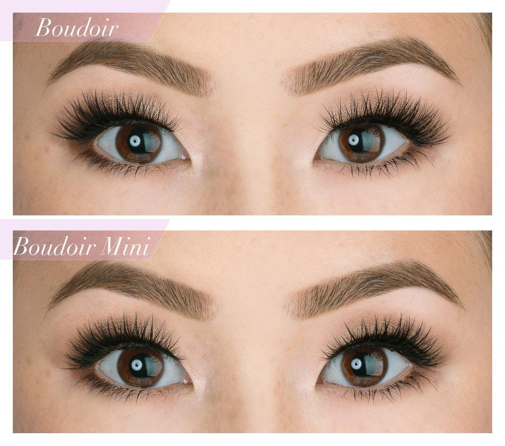 0f6c5a00e1c House of Lashes Beauty: Buy Online from Fishpond.com.au