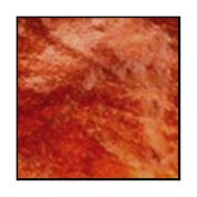Autumn Leaf, 10ml Shaker Jar, Primary Elements Arte-Pigments by Leslie Ohnstad