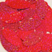 Oval Sequin 3.8cm Hot Pink Fluorescent Hologram Glitter Sparkle Metallic Couture Paillettes