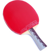DHS 4002 4-Star Table Tennis Racket Shakehand with a Wrist Support