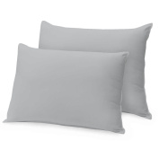 Ray Bedding 400 Thread Count 100% Egyptian Cotton Housewife Pillow Case, Silver, Pack Of 2