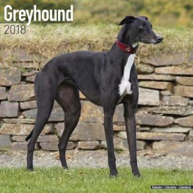 Greyhound Calendar 2018
