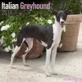 Italian Greyhound Calendar 2018
