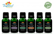 Big 6 Pack Organic Aromatherapy Essential Oil Kit with All-Time Favourite 15ml Selections. Undiluted Premium Therapeutic Grade Bulgarian Lavender, Peppermint, Spearmint, Tea Tree, Orange & Eucalyptus
