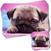 Cute Little Pug Puppy Set of 4 Placemats and Coasters