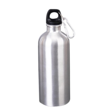 Nalmatoionme Stainless Steel Sports Water Bottle with Climbing Hook 600ml (Silver)