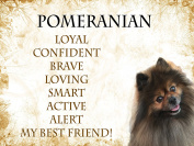 POMERANIAN SHABBY CHIC Retro SIGN/PLAQUE Style Dog Lovers/Owners Pedigrees