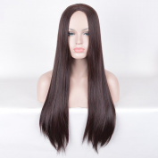 SiYi Long Straight Brown Wig Synthetic Wig Heat Resistant Cosplay Pastel Full Wigs for Women Girls
