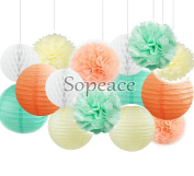 Sopeace Ivory Peach Mint Party Decor Kit Tissue Paper Pom Poms Flower Paper Lantern Honeycomb Balls Themed Party Hanging Decoration Favour for Birthday,Mint Green Themed Decor Graduation Party Decor