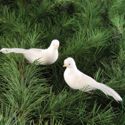 Dove Clip Ornament, Assorted of 2