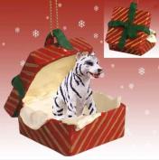 White BENGAL TIGER n Red Gift Box Christmas Ornament Polyresin RGBA11B