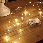 GardenDecor Led String Lights 50 Leds Decorative Fairy Battery Powered String Lights, Copper Wire light for Bedroom,Wedding