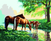 Prime Leader Wooden Framed Diy Oil Painting, Paint by Number Kit 41cm x 50cm Three horses