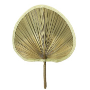 Sunny hill 33cm Natural Palm Leaf hand Fans Hemp Rope Binding Handle Chinese Traitional