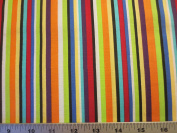 Colorworks Concepts Colourful Stripes Northcott Cotton Fabric 21593-99