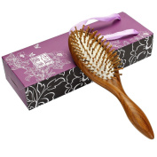 Neverland Beauty Natural Green Sandalwood Hair Brush - Anti Static Detangling Massage - Wooden Bristle Cushioned Organic Handmade Hairbrush with Gift Case for Mother's Day