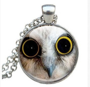 Owl Eye Necklace, Round Glass Pendant Charm, Cute Owl Jewellery Picture Necklace Photo Pendant