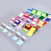 Alonea 12PCS Design Nail Art Foil Stickers Transfer Decal Tips 420CM Manicure Decor