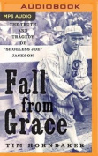 Fall from Grace [Audio]