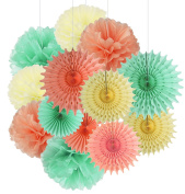 Qian's Party 13pcs Mint Peach Cream Tissue Paper Fan Tissue Pom Pom Party Decoration Baby Shower Decorations for Bridal Shower Decoration, Girl First Birthday Decoration