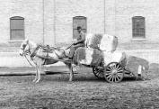 1906 Horse Drawn Cotton Cart, Mobile, Alabama Vintage Photograph 33cm x 48cm
