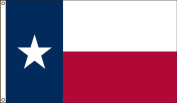 America's Flag Company 1.5m by 2.4m Nylon Texas As A Republic Historical Flag with Canvas Header and Grommets
