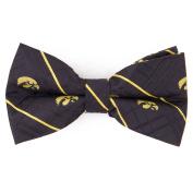 University of Iowa Oxford Bow Tie