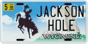 Jackson Hole Wyoming Ski and Snowmobile Area Licence Plate