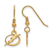 Tampa Bay Ligtning Extra Small (1cm ) Dangle Earrings Wire