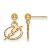 Tampa Bay Ligtning Earrings Dangle Ball
