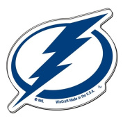 NHL Tampa Bay Lightning 23884011 Premium Acrylic Carded Magnet, Small, Black
