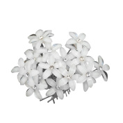 Casa De Novia Jewellery Flower White Crystal Bridal Wedding Hair Pins Clips Accessories Pack of 20pcs