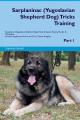 Sarplaninac (Yugoslavian Shepherd Dog) Tricks Training Sarplaninac (Yugoslavian Shepherd Dog) Tricks & Games Training Tracker & Workbook. Includes  : Sarplaninac Multi-Level Tricks, Games & Agility. Part 1