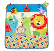Fisher-Price On-The-Go Activity Throw
