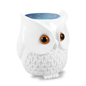 BFF For Alexa LinTimes Owl Statue Crafted Guard Station Creativce for Amazon Echo Dot 2nd and 1st Generation Guard Holder Guard Station Decoration for Smart Home