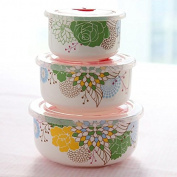 Food Storage Containers for Kids and Adults, Bone China three-piece Preservation bowls box, lunch box microwave ceramic special lunch box lunchbox,Pansy/year