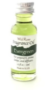 Evergreen - Wild Rose Fragrance Oil Home Collection